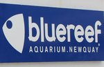 Blue Reef Aquarium Newquay